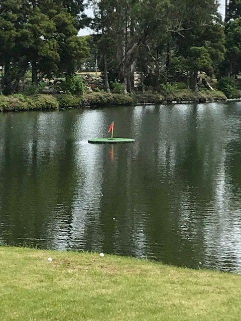 ダイナミックゴルフ茂原水上グリーン