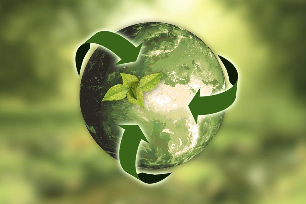 リサイクル ダンボール