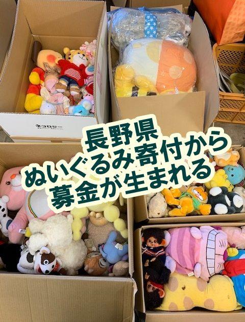 長野県 ぬいぐるみ寄付,募金
