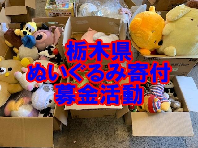 栃木県 ぬいぐるみ寄付,栃木県 募金