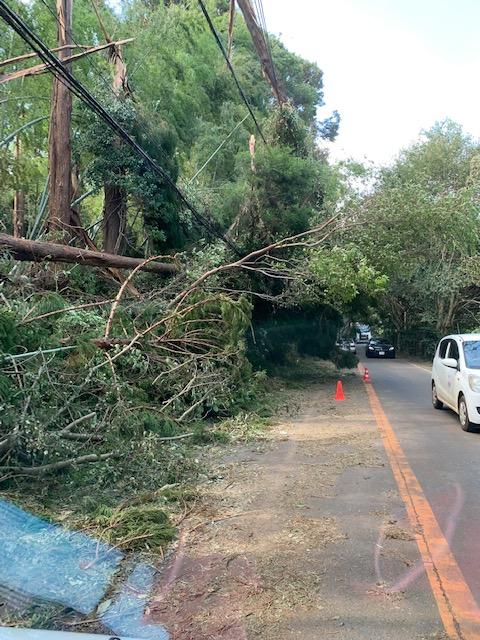 台風15号 千葉県 山武市 被害
