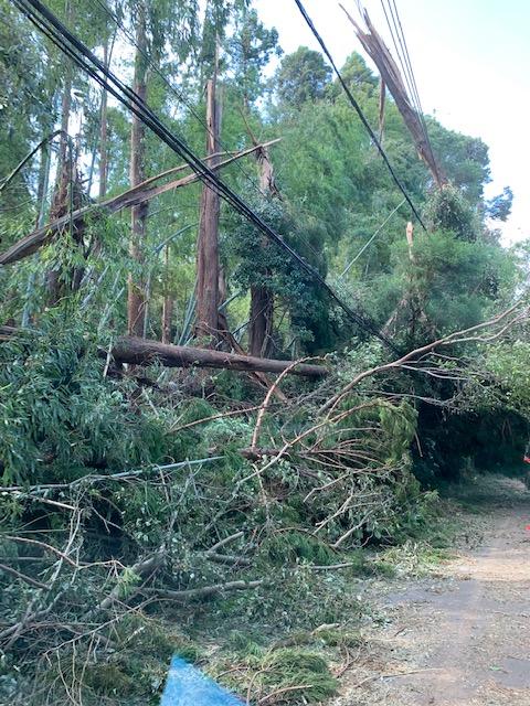 台風15号 千葉県 被害