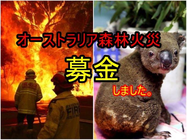 オーストラリア森林火災 募金